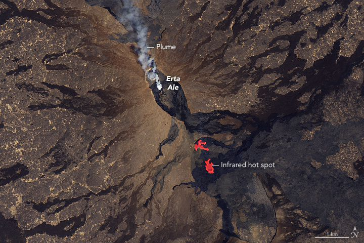 Erta Ale - 26.01.2017 - gas plume at the southern pit of the caldera and flank eruption - doc.NASA Earth Observatory image by Joshua Stevens, using Landsat data from the U.S. Geological Survey. Caption by Adam Voiland. - Landsat 8 OLI