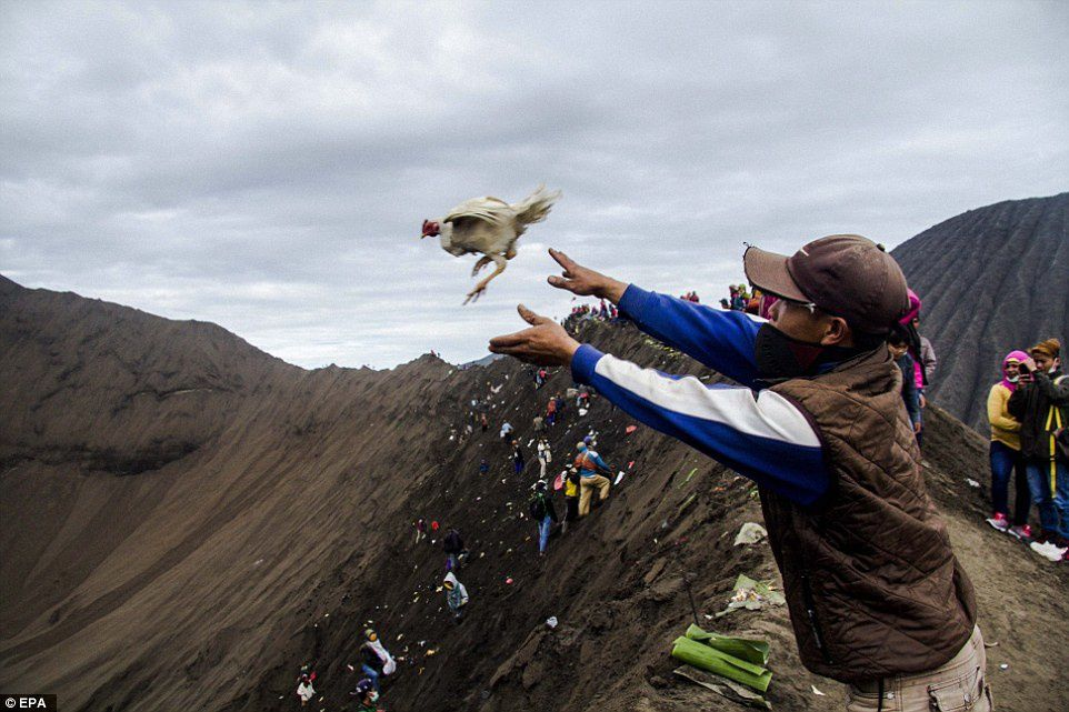Throwing offerings in the Bromo crater - EPA archive images - Fully Handoko - Daily Mail & Reuters.