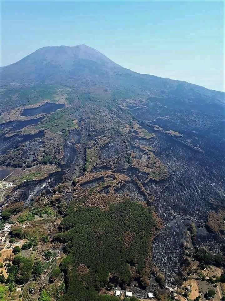 Vesuvius slopes after fires ... an environmental disaster - photo Anima Vesuviana