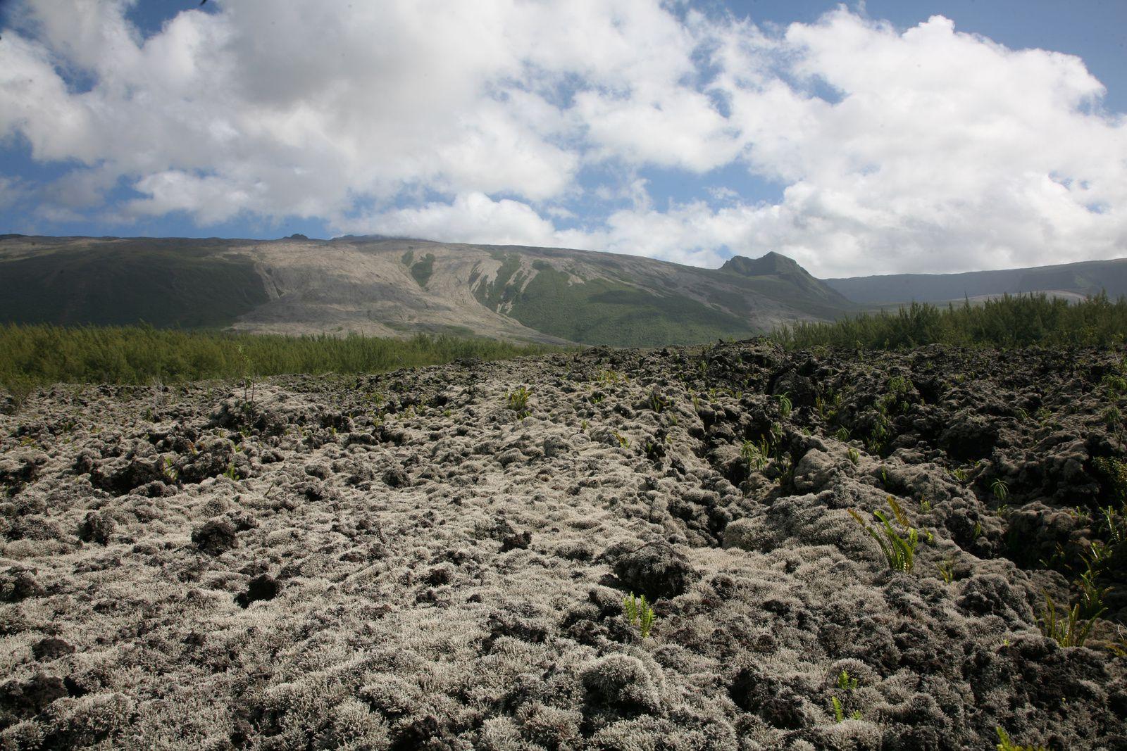 Piton of La Fournaise - Route of the lava / Grand Brûlé -2004 lava flows -photo © Bernard Duyck / June 2017