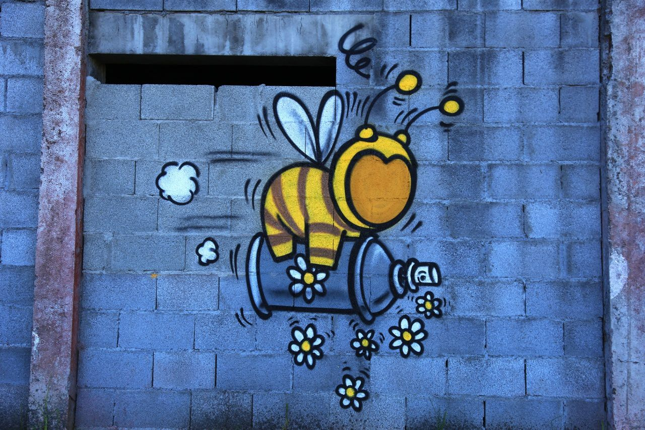 An alternative to the Roundup, favorable to bees ... sow flowers! - photo © Bernard Duyck / June 2017 - on the wall of a brewery in Cilaos.