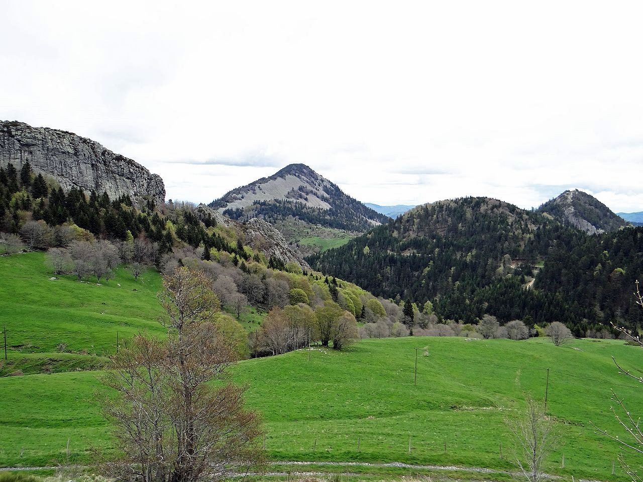 Le Rocher des Pradoux, on the left, and Suc de Sara in the center  - photo Mossot - Personal work, CC BY-SA 4.0, httpscommons.wikimedia.orgwindex.phpcurid = 48902971