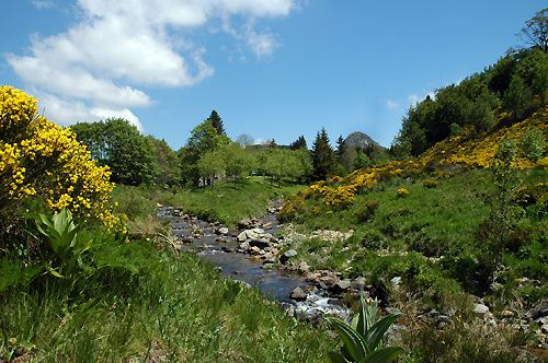 The sources of the Loire, with the Gerbier de Jonc in the background - photo Hiking in the Ardèche countryside.