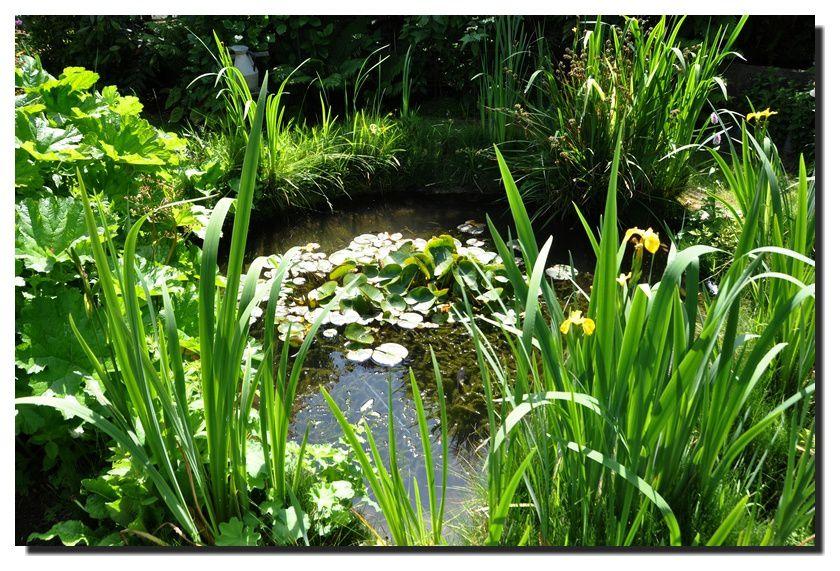 Quettehou, jardin de la Gervaiserie