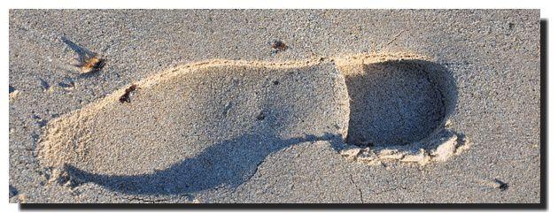 Et la mer sur le sable efface les pas ....
