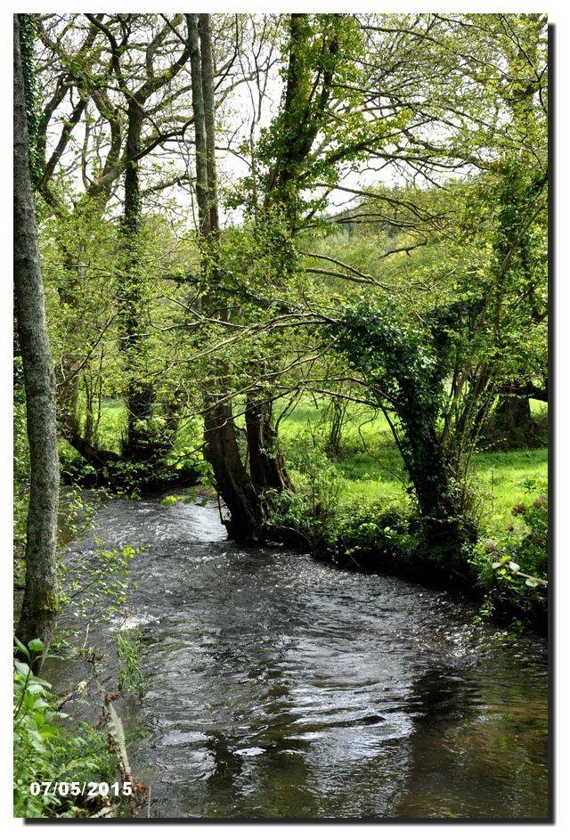 &quot&#x3B;C'est un trou de verdure où chante une rivière,&quot&#x3B;