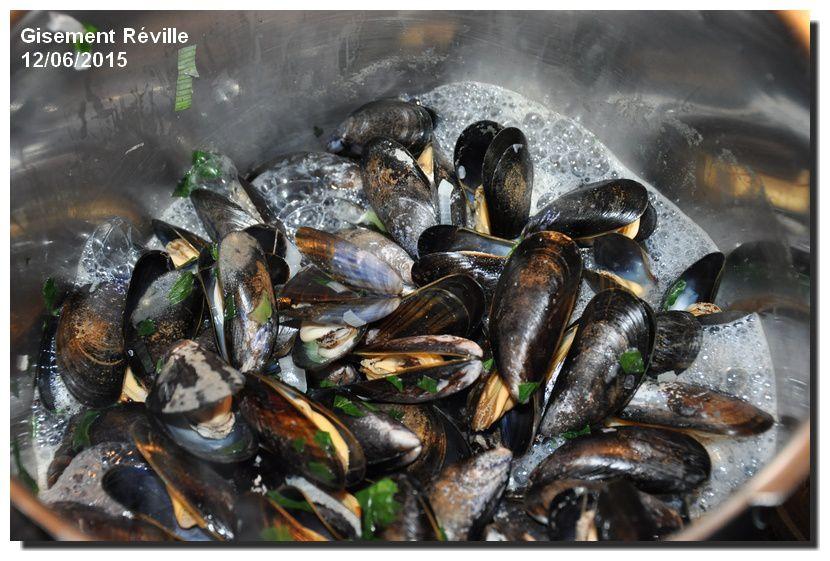 Moules de l'est Cotentin , bonnes à la dégustation