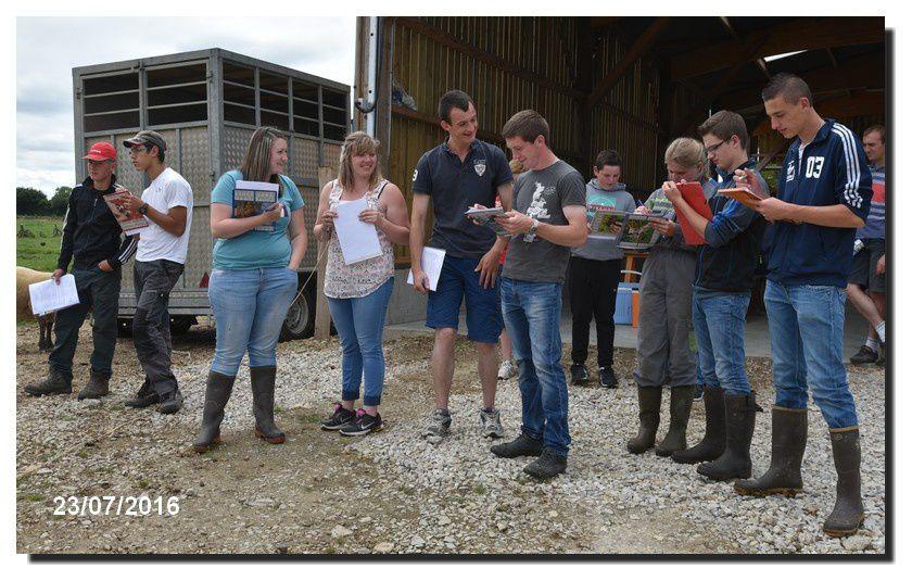 Bovins et ovins : Jury des jeunes