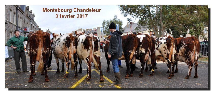 Montebourg : ma chandeleur 2017 (2/2)