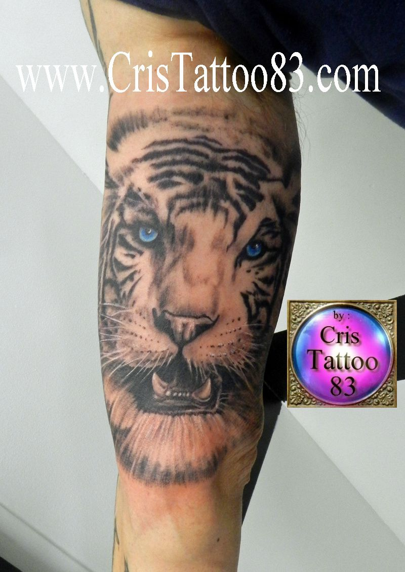 Tatouage Interieur Biceps avec tiger-tattoo-arm - cristattoo83
