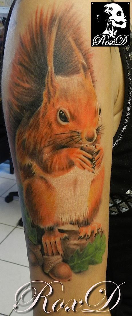 Squirrel realistic tattoo