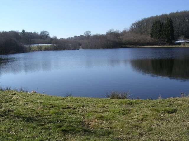 Journée Pêche à l'étang des Marsins (Saint-George-de-Mons)