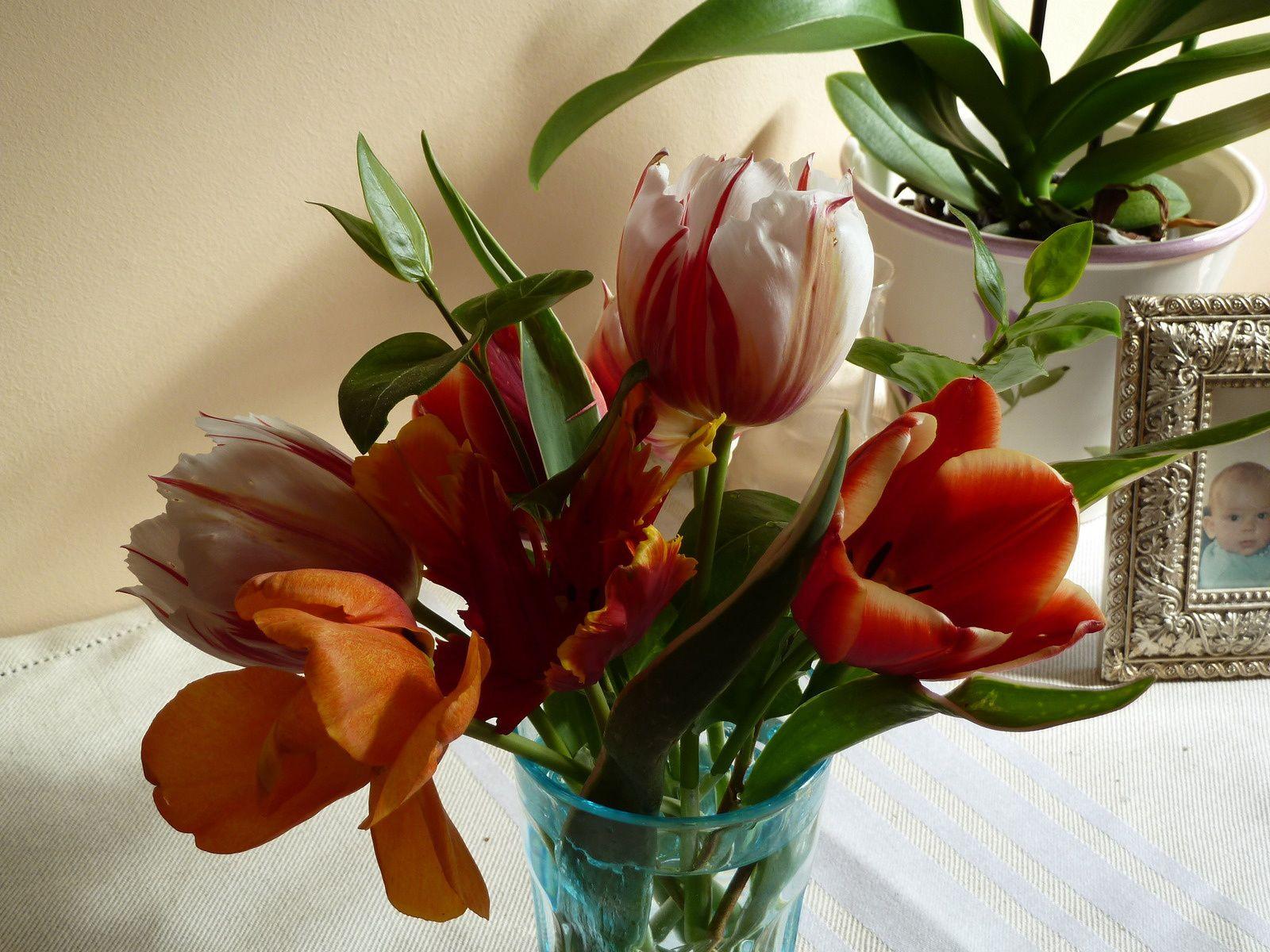 Bouquet de tulipes du jardin.