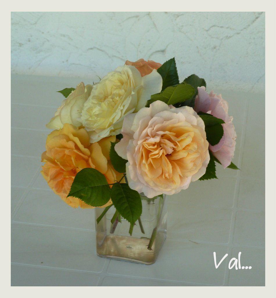 Un bouquet de roses du jardin.