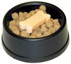 Nourrissez correctement votre chien