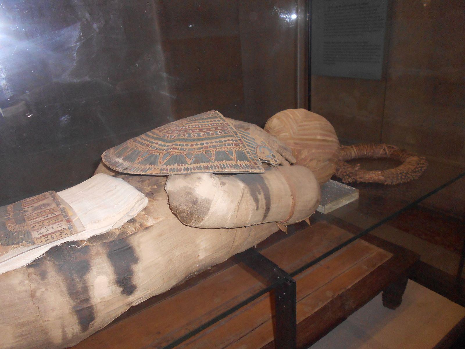 la momie d'un grand prêtre égyptien