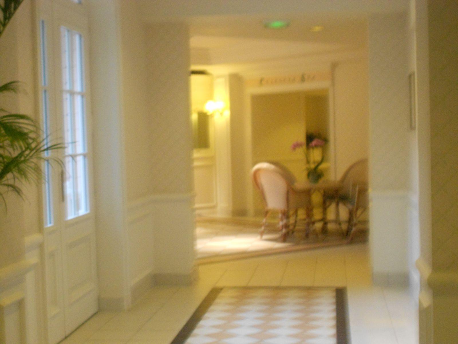 les grands couloir qui relient les ailes de l'hôtel,si j'avais été seule,je m'y serai perdue