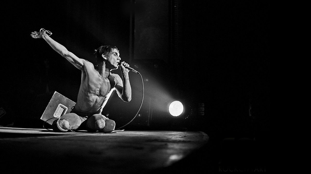 Iggy Pop, 1977 - on stage