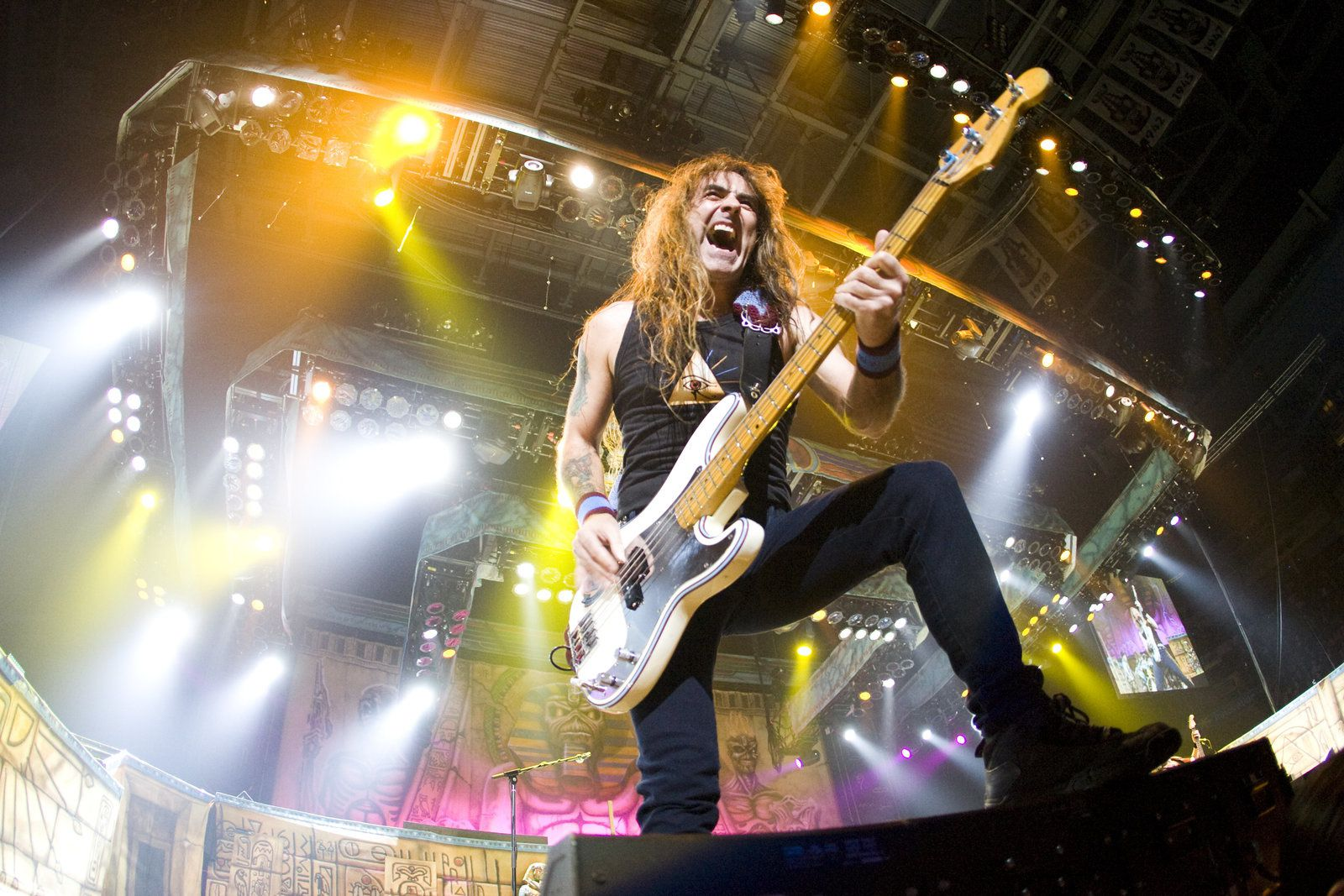 Steve Harris, Iron Maiden - photo by Mark Coatsworth/flickr