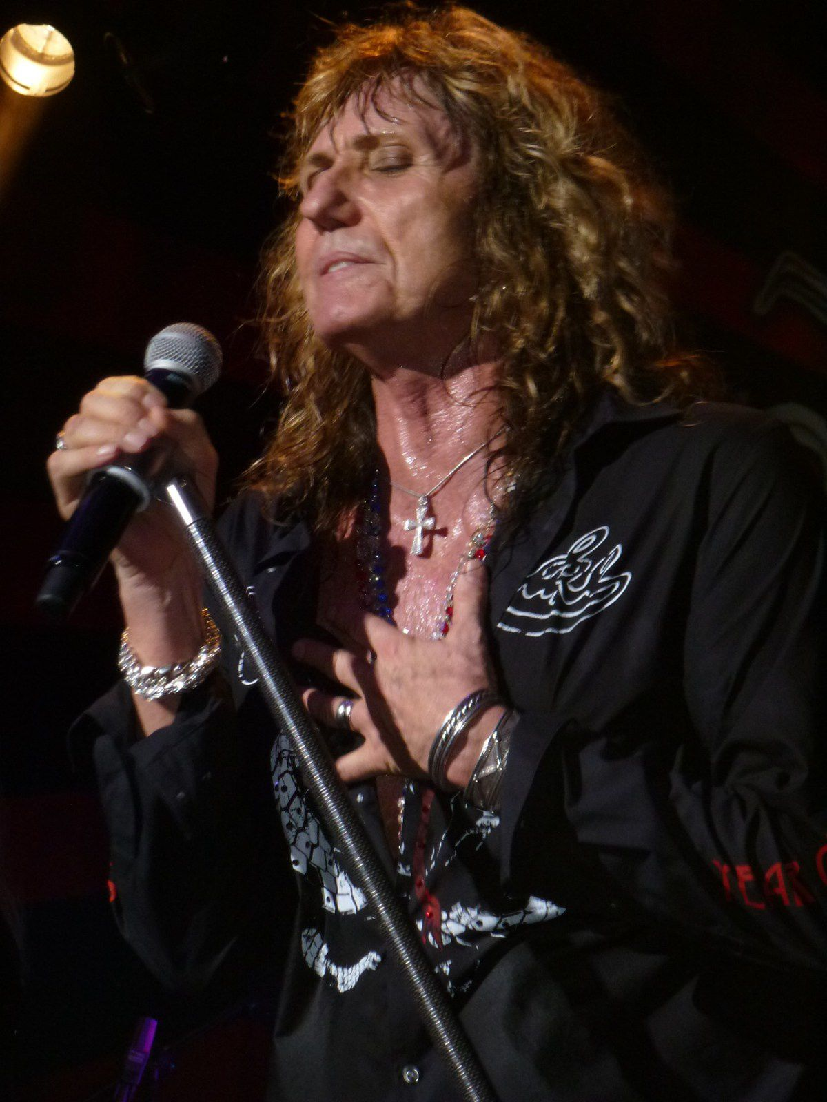 David Coverdale, Whitesnake (2013)