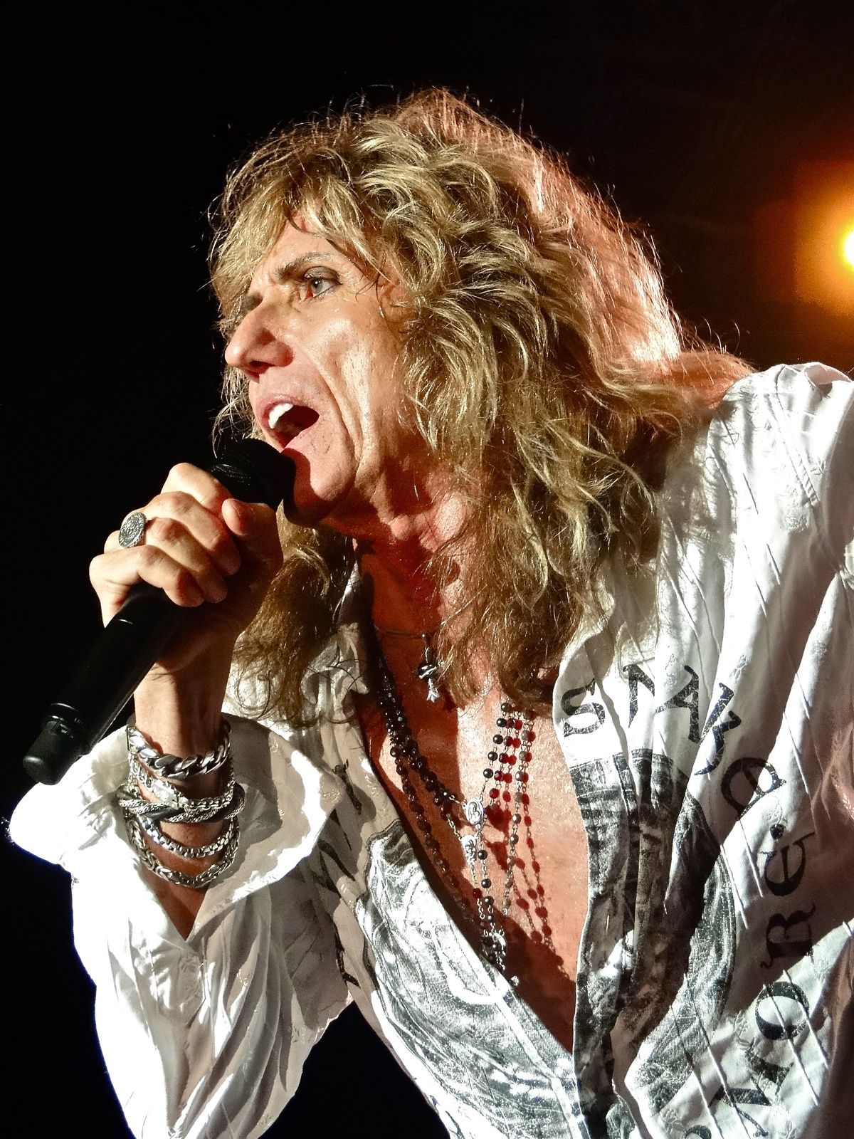 David Coverdale, Whitesnake (2011)