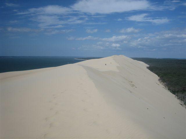 Les crêtes de la dune du Pyla et son imposante face est