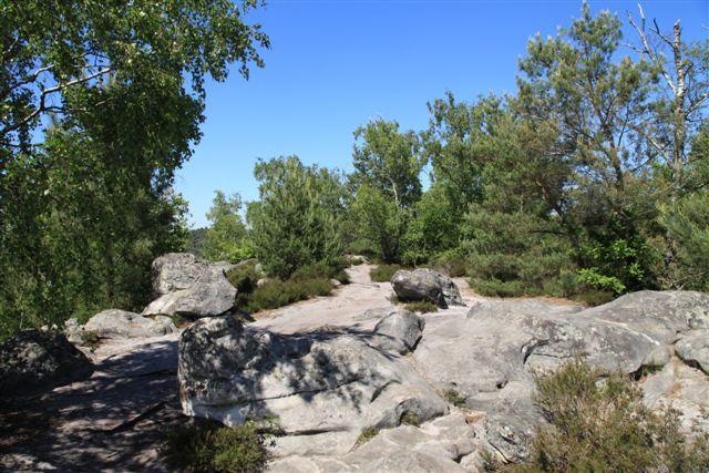 Au sommet de la Roche de la Souris (sentier des 25 bosses)