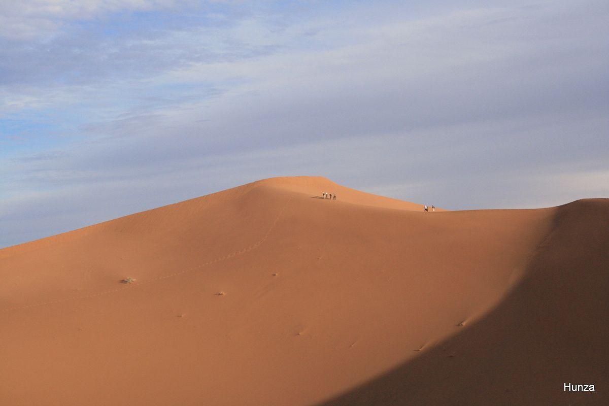 L'ascension de la plus haute dune de l'erg Zaher