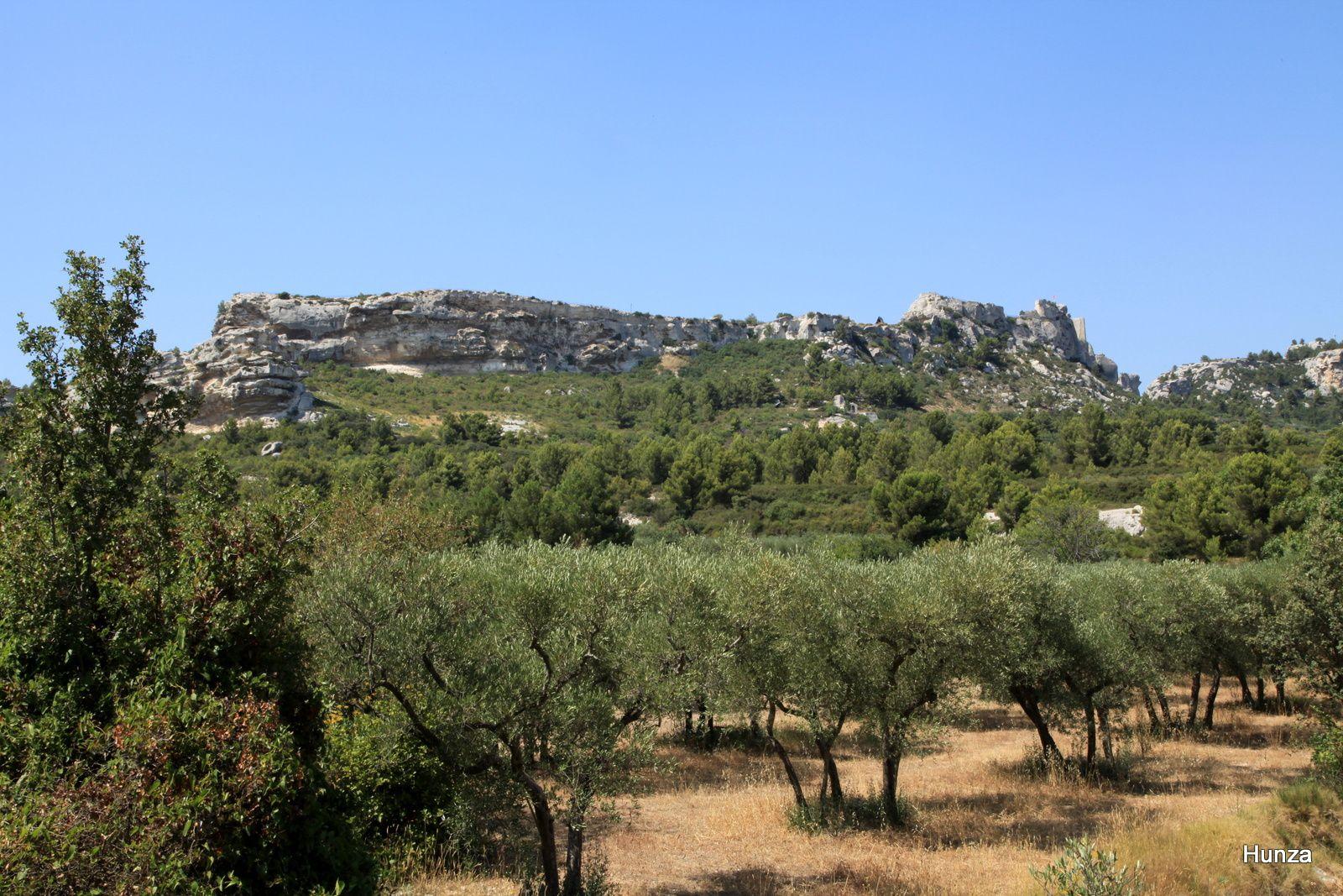 Les Baux de Provence vus depuis la route de Maussane les Alpilles aux Baux