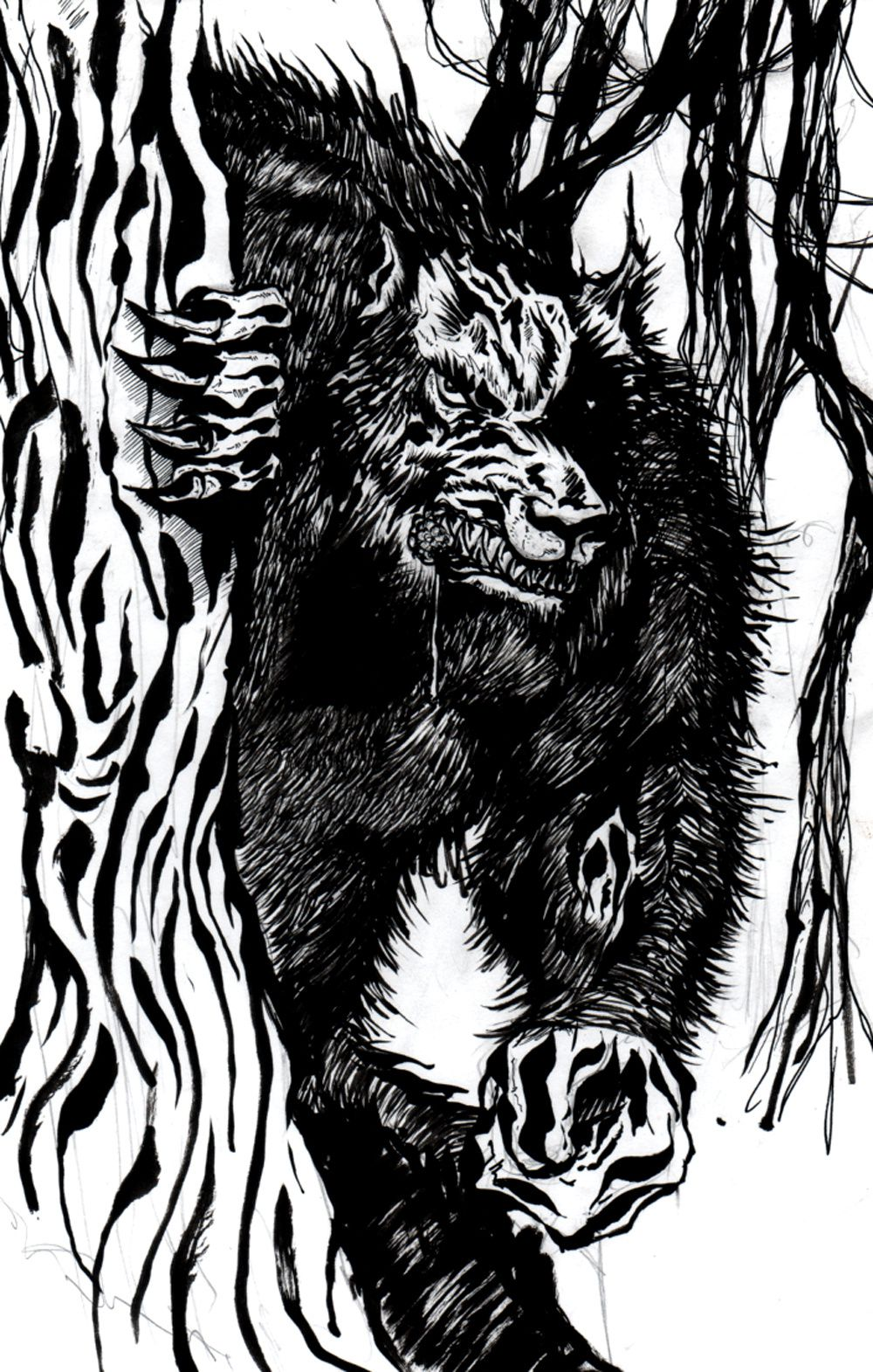 dessin loup garou (encrage gayiel)