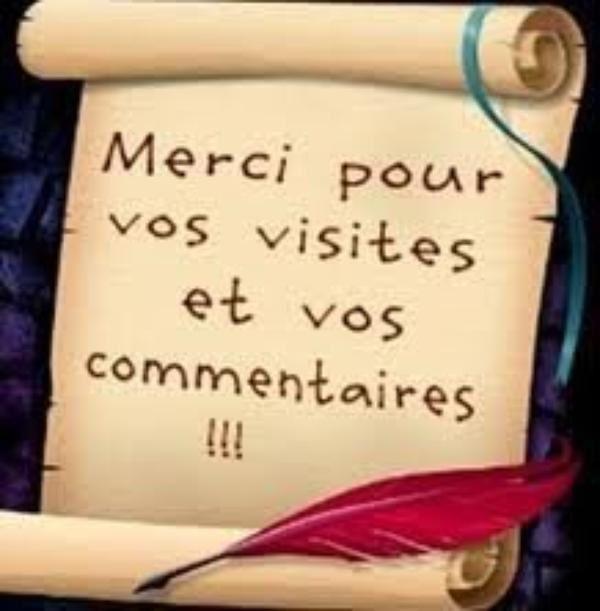 Récents commentaires à l'émission de Guadeloupe 1 ère sur les «propos» de Joëlle Ursull