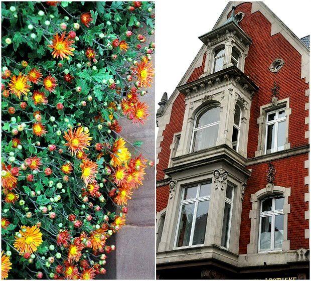Fête du chrysanthème en Allemagne à Lahr