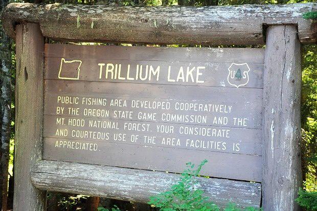 Doria aux Etats Unis dans l'Oregon (2016 - 2)... Lac Trillium avec vue sur le Mount Hood