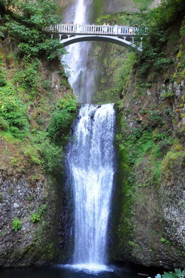 Doria aux Etats Unis dans l'Oregon (2016 - 9)... Multnomah falls