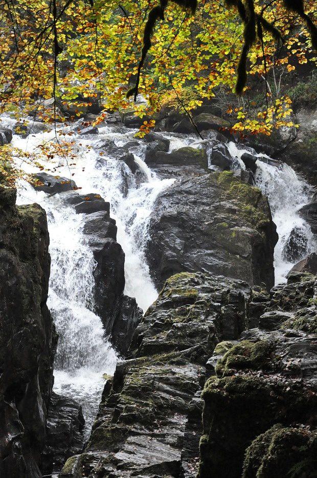 Doria en Ecosse (8)... La cascade &quot&#x3B;The Hermitage&quot&#x3B;
