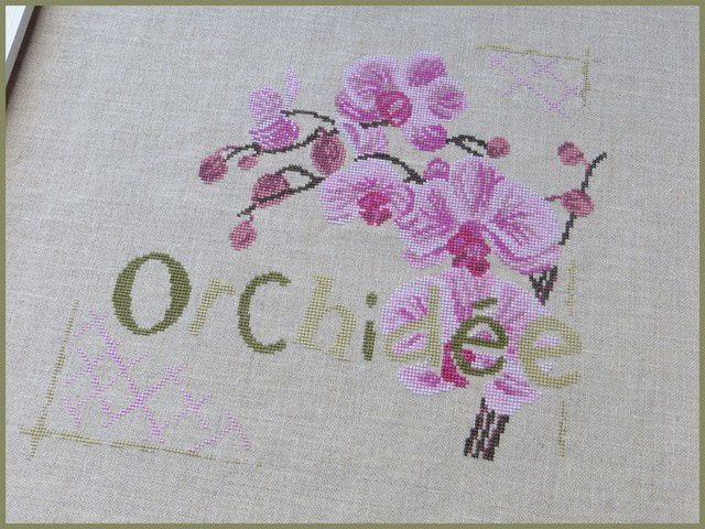 L'orchidée de Lilipoints