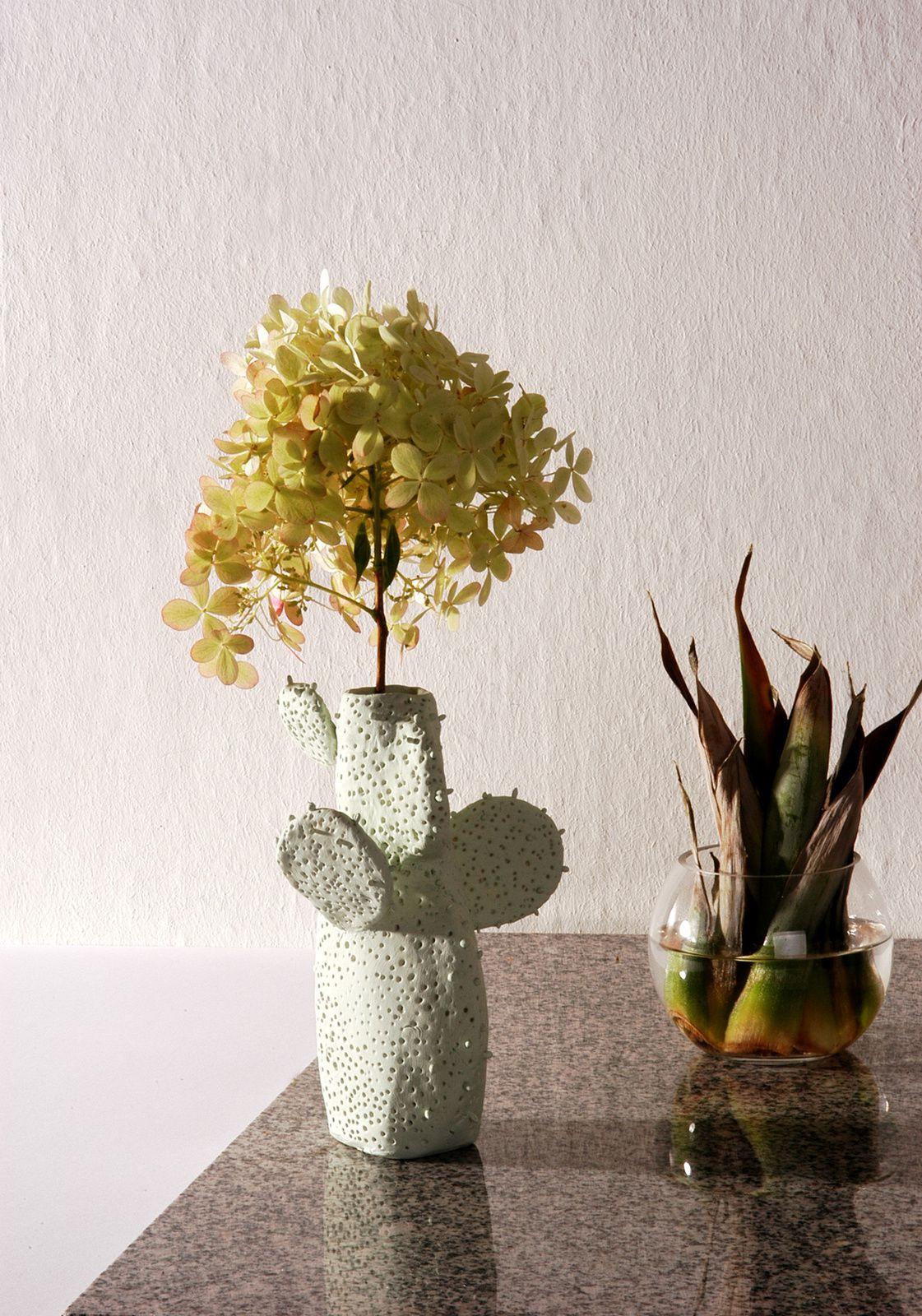 DIY-Kaktusvase mit Kaltporzellan