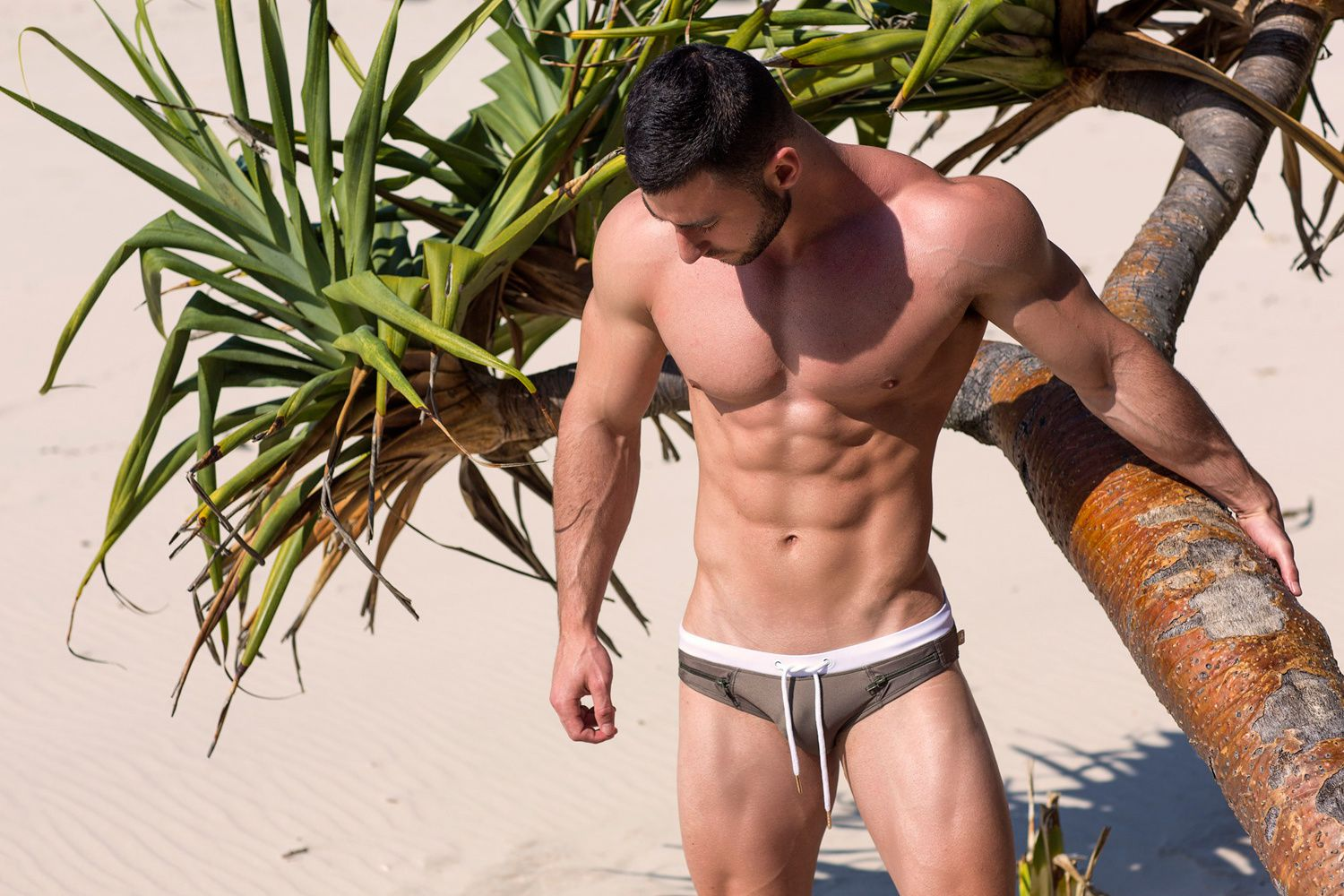 Marcuse : Collection15