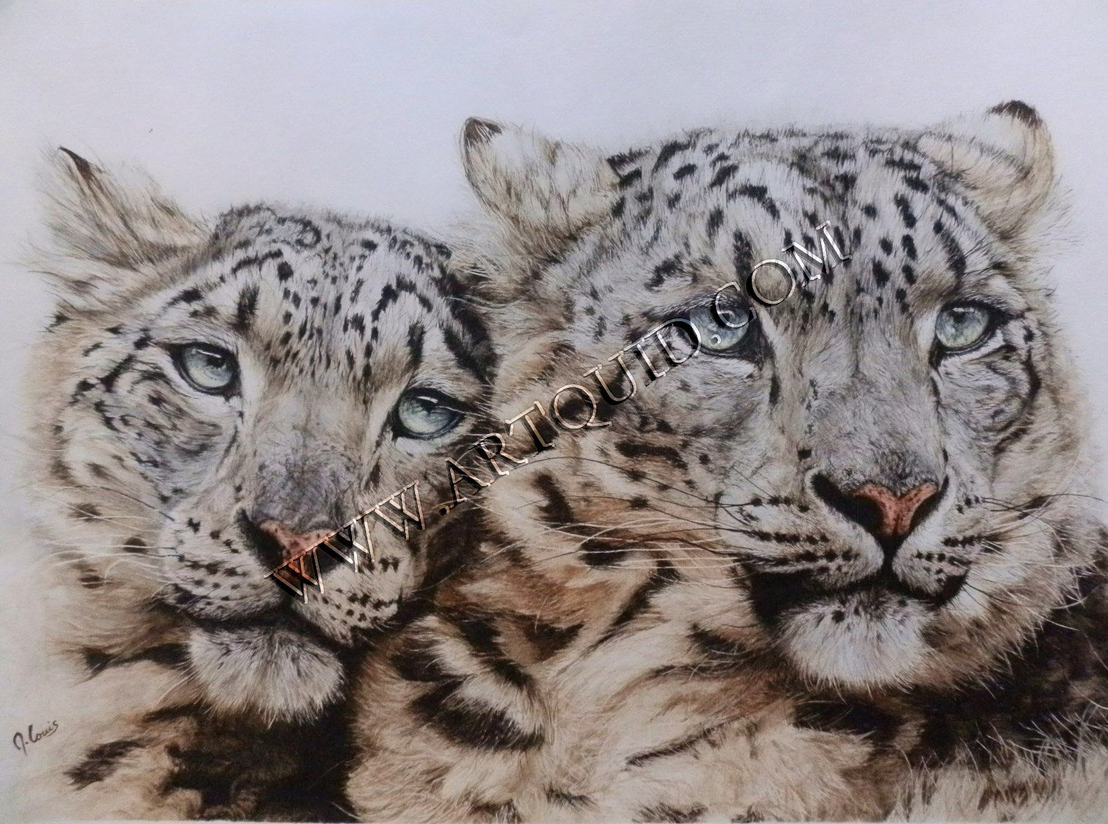 Maryse louis peintre animalier aquarellement votre for Artiste animalier