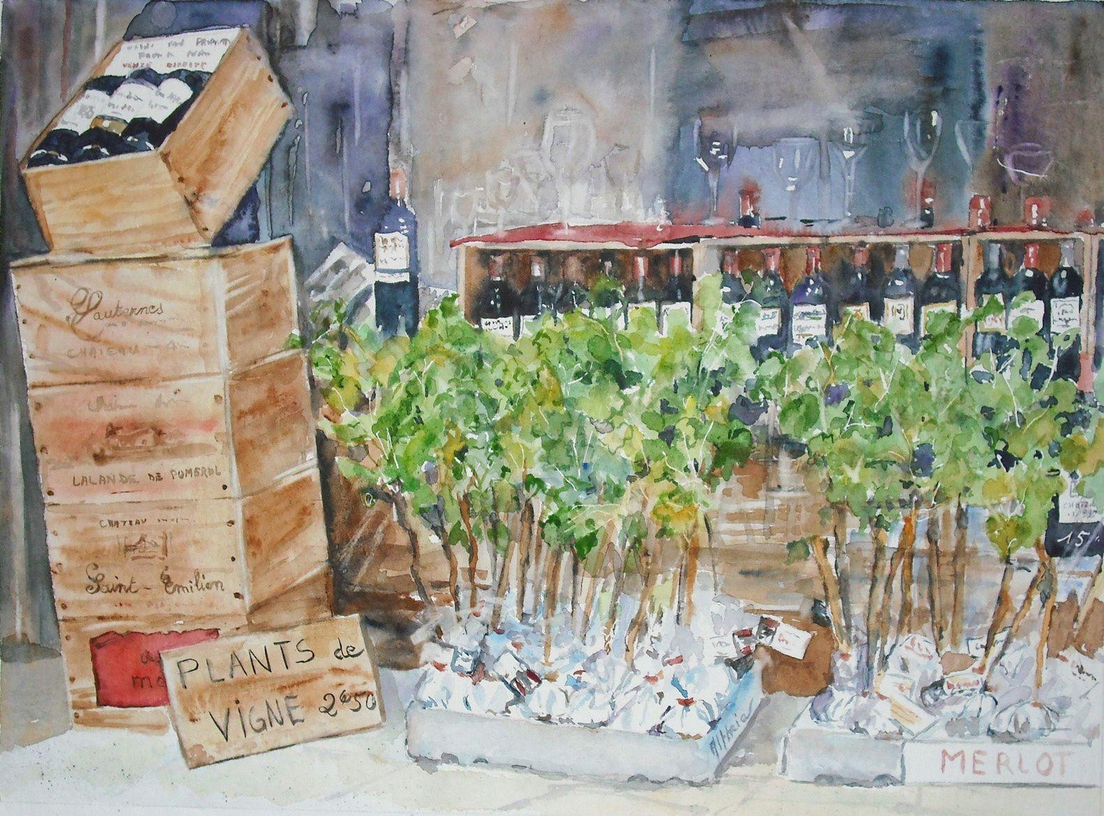 Vigne et vin _ aquarelle _ altheia