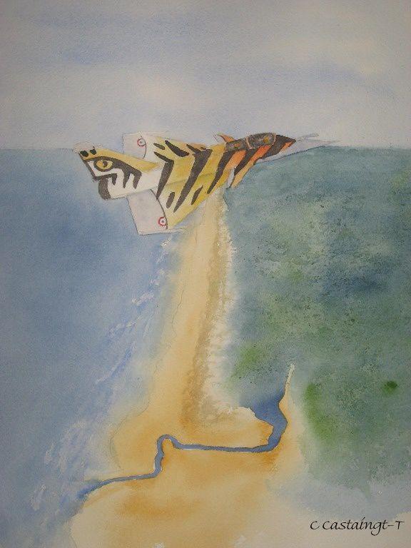 """rafale décoré """"tiger meet"""" au dessus du courant d'huchet_celine_aquarelle"""