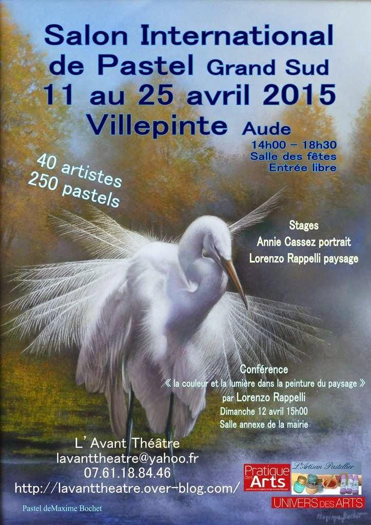 salon du pastel Villepinte(11)