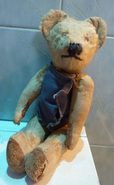 ours de son enfance_Robert_Photo