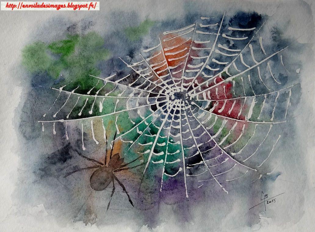 toile araignée_claude_aquarelle