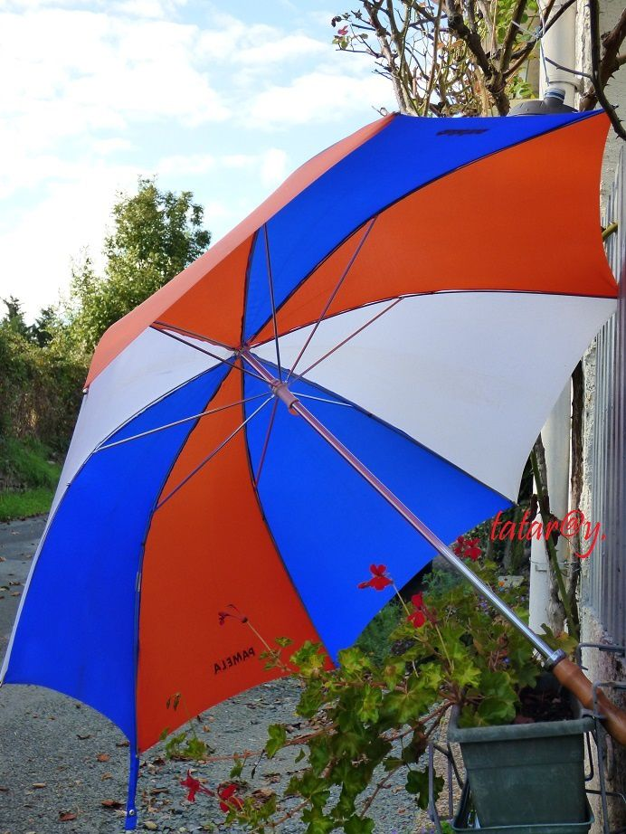 parapluie tricolore_Tatary_photo