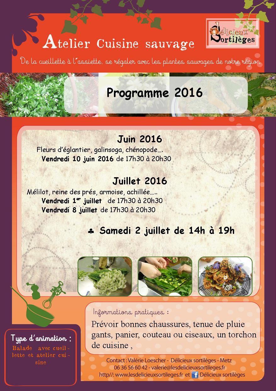 Le programme des ateliers cuisine sauvage 2016