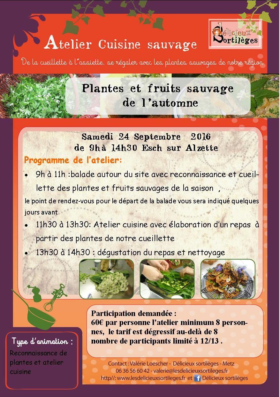atelier cuisine sauvage à Esch sur Alzette
