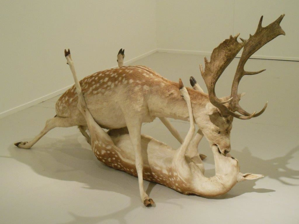 Wim Delvoye : Trophy, 1999 - Daims taxidermisés.