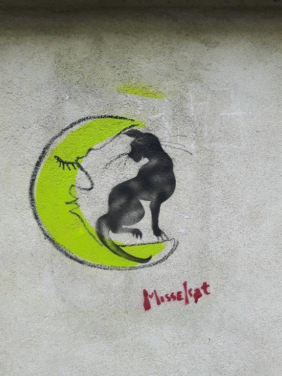 Elle agit sous la lune et n'a pas froid aux yeux : à quatre-vingts ans, MisseCat est probablement la doyenne des artistes de rue.