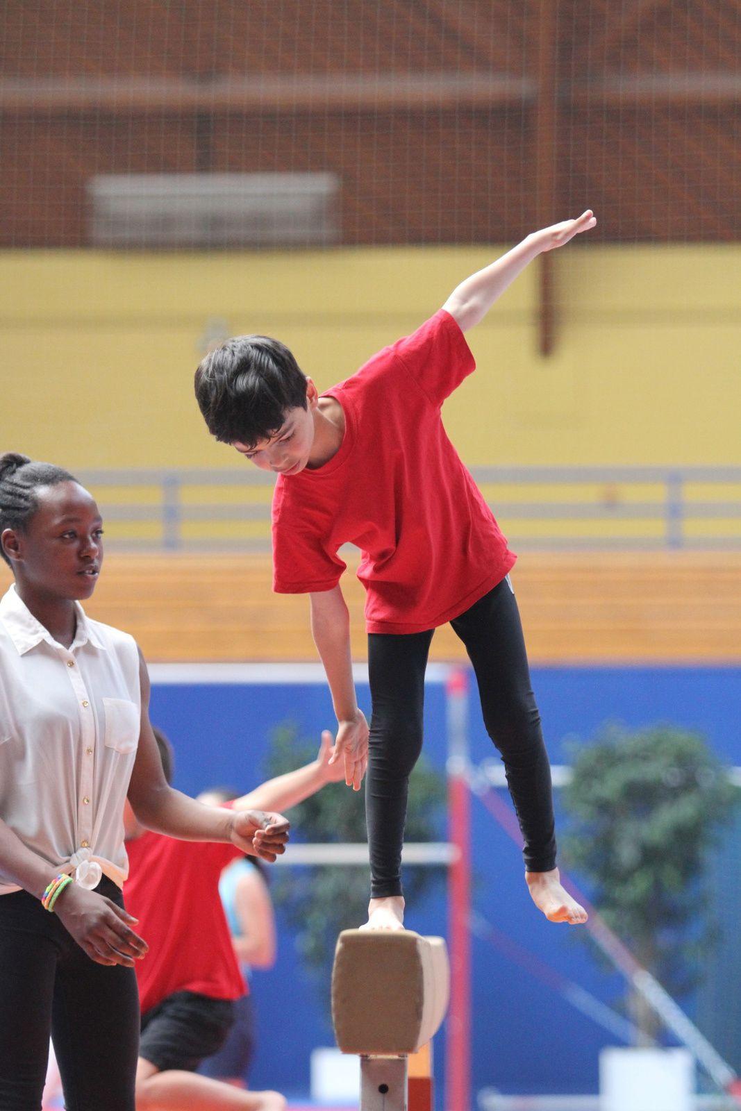 La très, très belle saison du CMOV Gymnastique, danse et trampoline